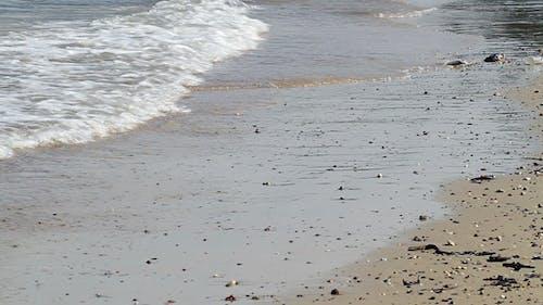 Sea Shore Wave II