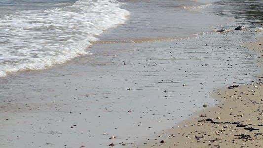 Thumbnail for Sea Shore Wave II
