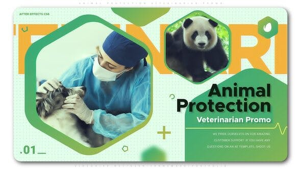 Thumbnail for Animal Protection Veterinarian Promo