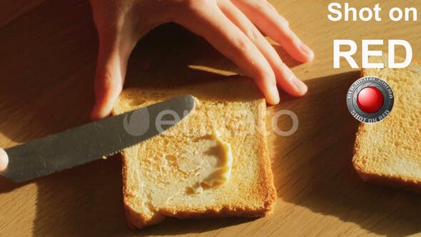 Thumbnail for Toaster Bread