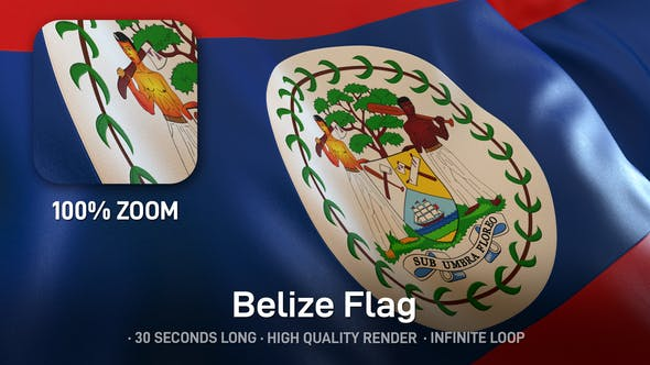Thumbnail for Belize Flag