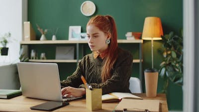 Young Businesswoman Web Calling on Laptop in Office