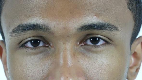 Thumbnail for Blinking Eye Man, Close Up