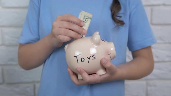Piggy Bank for Toys