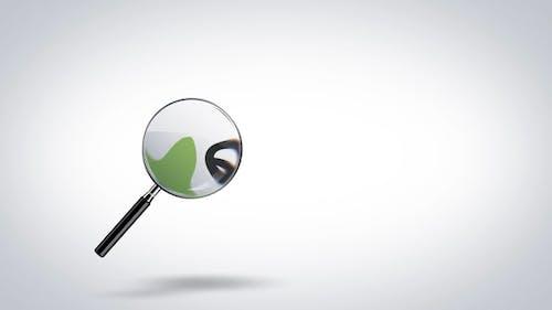 Search Logo Reveal