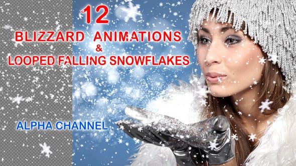 Thumbnail for Blizzard of Snowflakes
