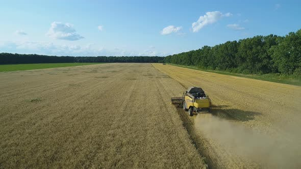 Thumbnail for Aerial Drone Footage. Following Combine Harvester Gathers the Wheat. Harvesting Grain Field