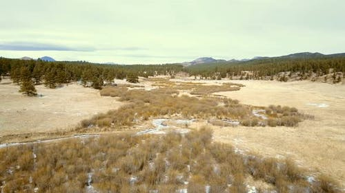 Aerial view of Pikes National Forest in the Winter.