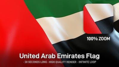United Arab Emirates / UAE Flag