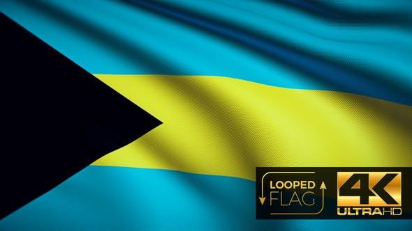 Thumbnail for Bahamas Flag 4K