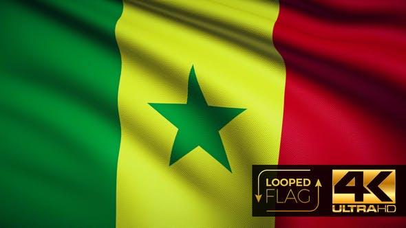 Thumbnail for Senegal Flag 4K