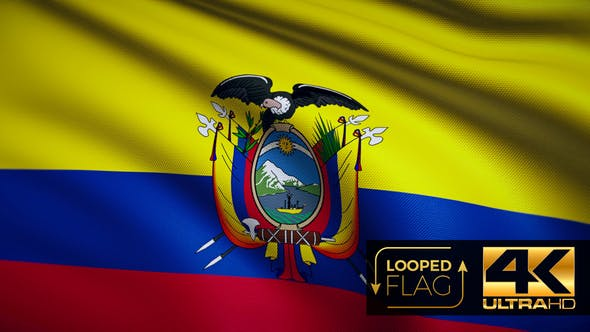 Thumbnail for Ecuador Flag 4K