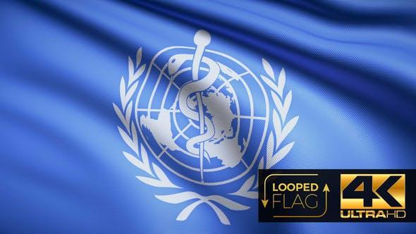 Thumbnail for World Health Organization Flag 4K