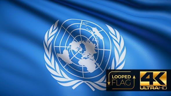 United Nations Flag 4K