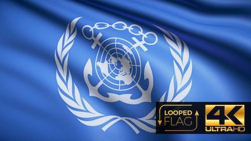 The International Maritime Organization Flag 4K