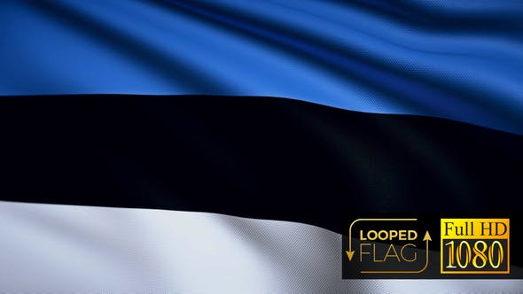 Thumbnail for Estonia Flag