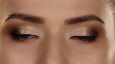 Makeup. Professional Makeup. Closeup