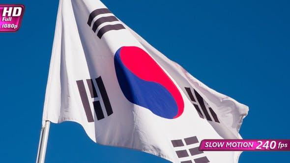 Thumbnail for Korean Flag Waves The Wind