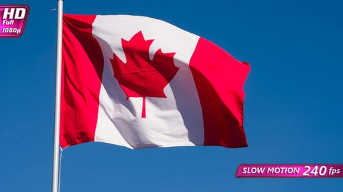 Canadian Flag Waves The Wind
