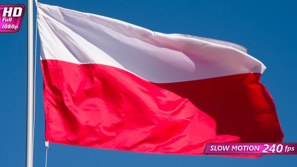Thumbnail for Polish Flag Waves The Wind