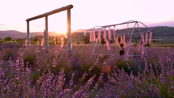 Girl in Tourist Lavender Garden