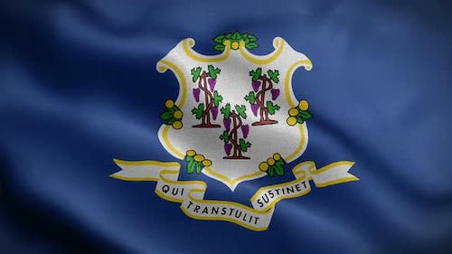 Connecticut State Flag Blowing In Wind