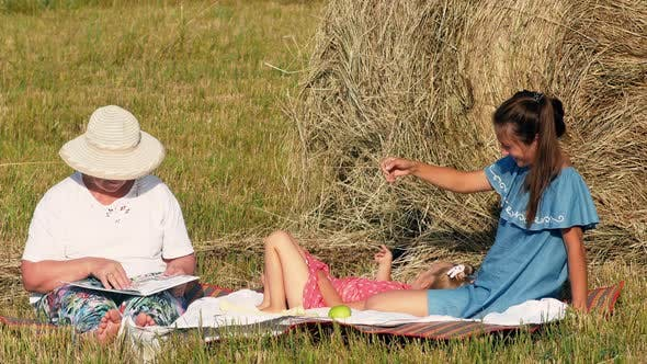 Thumbnail for Happy Caucasian Family Have Picnic in The Meadow