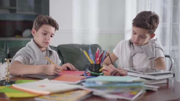 Thumbnail for Two Smart Caucasian Twin Brothers Drawing at Home with Colorful Pencils