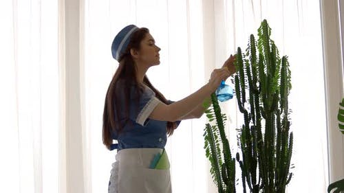 Young Housemaid Working