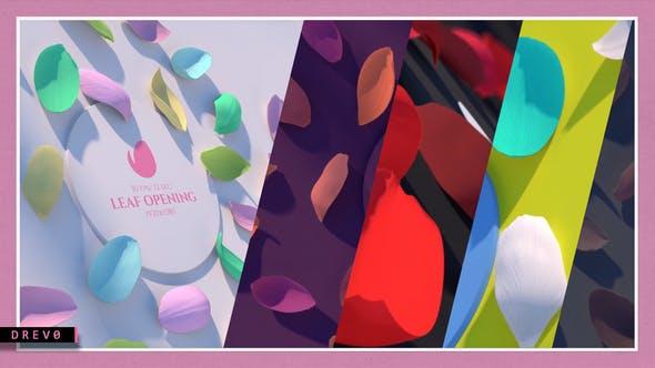 Leaf Romantic Opener/ Valentine's Day/ Tulips/ I Love You/ Sexy Logo/ Memory/ Honeymoon/ Wedding/ TV