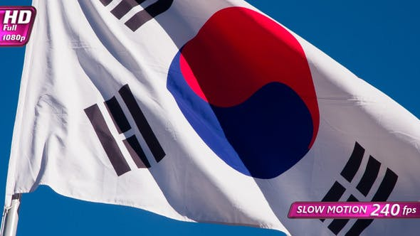 Thumbnail for Korean Flag Wiggles The Wind