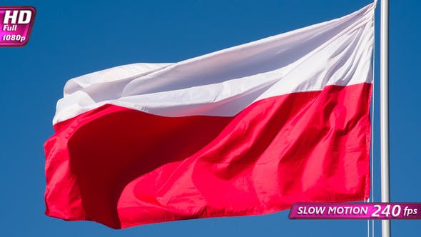 Cover Image for Polish Flag Wiggles The Wind