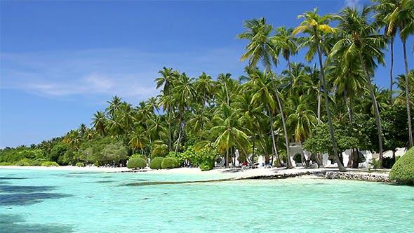 Thumbnail for Beautiful Coast Of Maldives Island