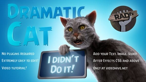Thumbnail for Funny Dramatic Cat