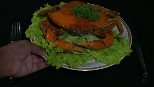 Placing a Crab Dish 2