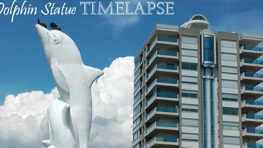 Thumbnail for Dolphin Statue Time Lapse