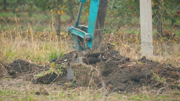 Thumbnail for Excavator Digs the Roots of Old Trees