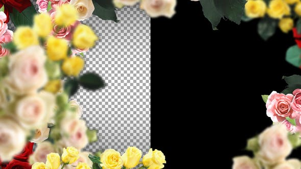 Thumbnail for Love Flower Frame And Transitions