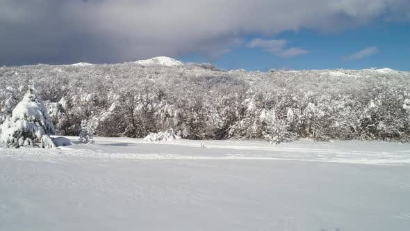 Cover Image for Snowy Countyside Road With Forest