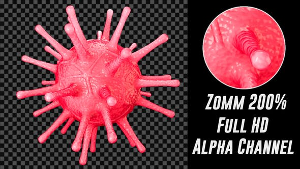Thumbnail for Coronavirus Covid 19 Loop