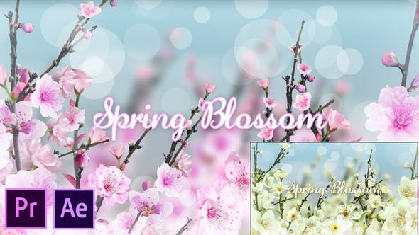 Thumbnail for Spring Blossom - Premiere Pro