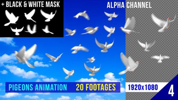 Thumbnail for Flying Doves 4