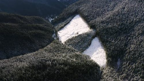 Aerial Top Down Flyover Shot of Illegal Deforestation in Winter Mountains