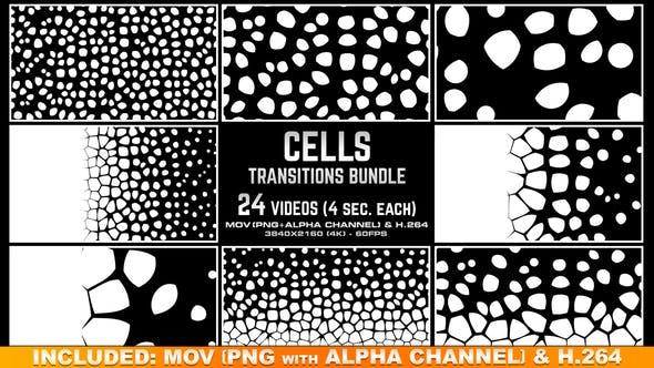 Cells Transitions Bundle 4K