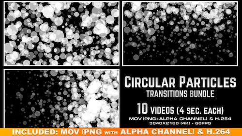 Circular Particles Transitions Bundle - 4K