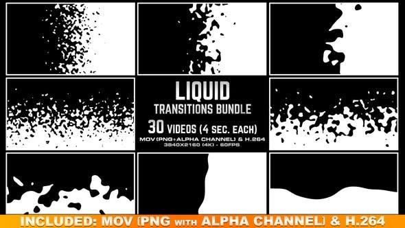 Thumbnail for Liquid Transition Bundle - 4K
