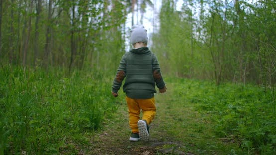 Thumbnail for A 2-Year-old Caucasian Boy Walks in Slow Motion Along Forest Paths in a Pine Forest. Walks in the