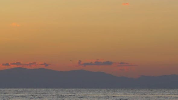 Cinemagraph - Sea Gull in Evening Sky