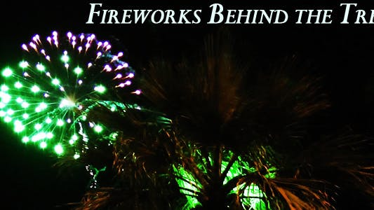 Thumbnail for Fireworks Behind The Tree