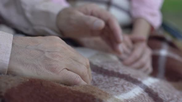 Thumbnail for Grandfather Holding Grandmothers Hand, Old Couple Resting in Nursing Home Park